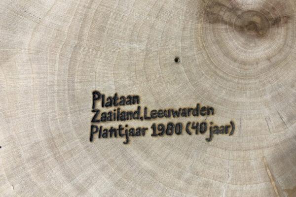 Voorbeeld bomenpaspoort plataan